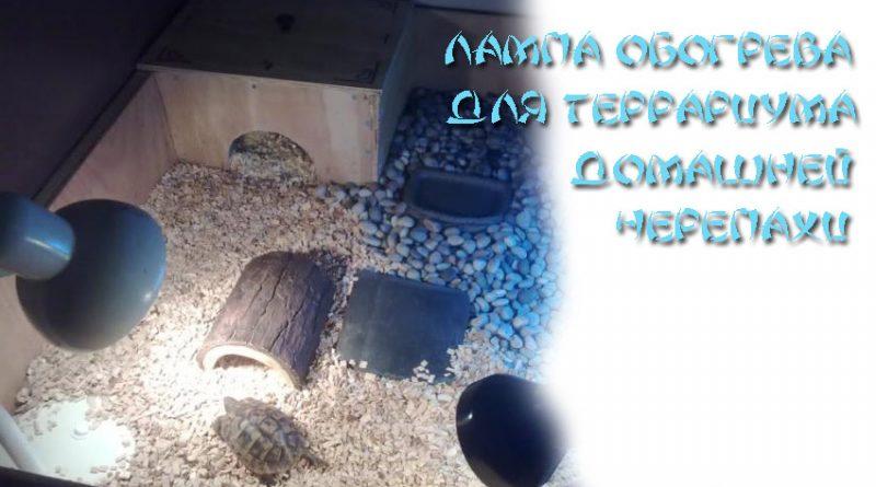 Лампа накаливания для черепах