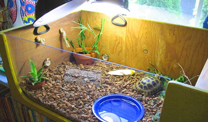 Как сделать аквариум для террариума 368