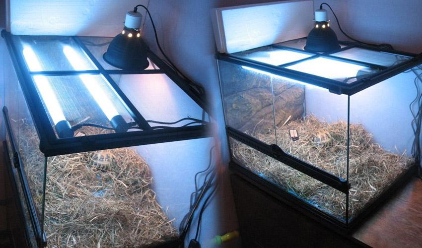 ультрафиолетовая лампа для черепах купить